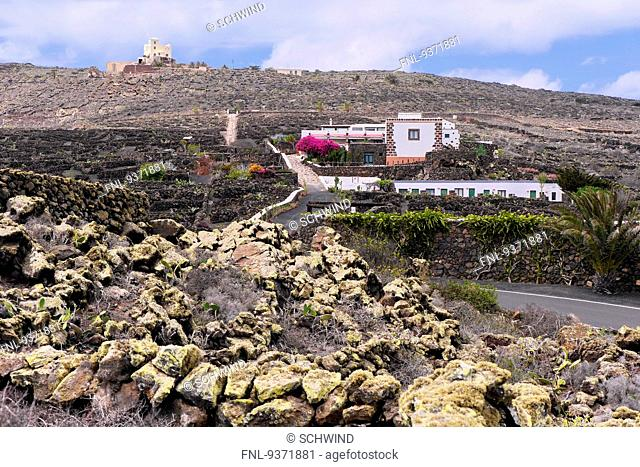 Villa with garden, Lanzarote, Canaries, Spain, Europe