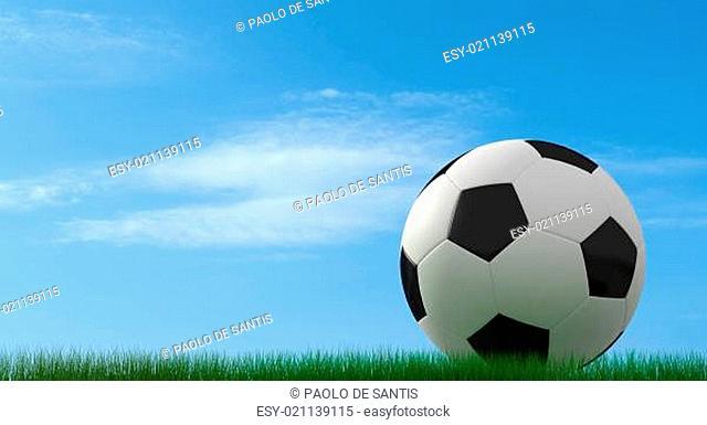 classic soccer-ball on grass