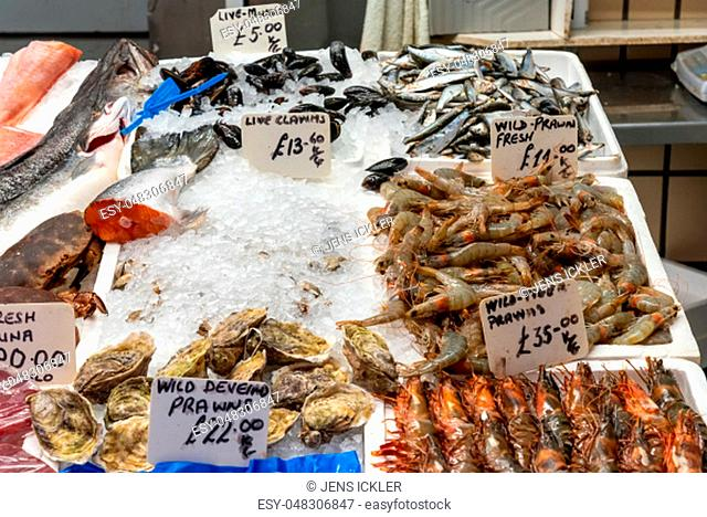 Clamms and crustaceans for sale at a market