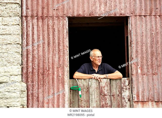 A farmer leaning on a half door looking out of a farm building