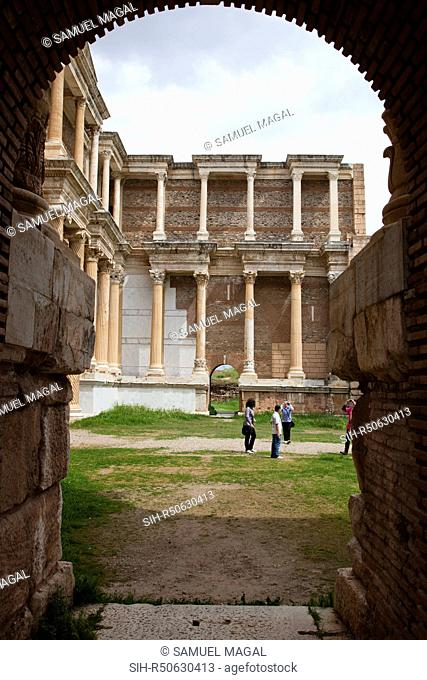 The gymnasium was constructed in at the 3rd century AD, in the times of Geta and Caracalla. It was a part of a complex divided into three main sections: the...