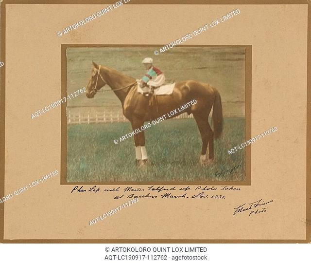 Photograph - Phar Lap & Gerald Telford, Mark Friend, 1931, Mounted hand tinted sepia photograph depicting Gerald Telford, son of trainer Harry Telford
