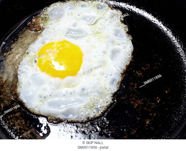 An egg frying in a skillet