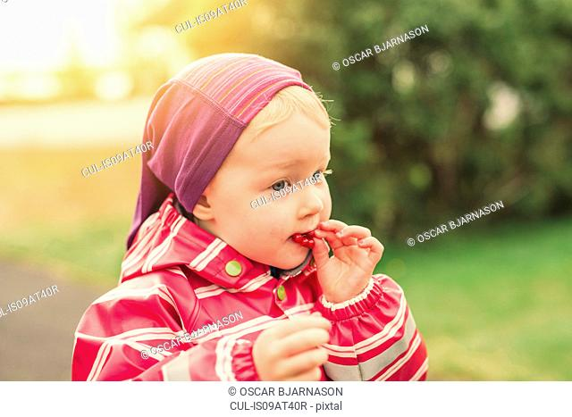 Young girl eating redcurrants, outdoors