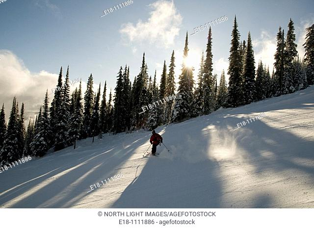 Canada, BC, Sun Peaks Ski Resort  Skier on freshly groomed ski run