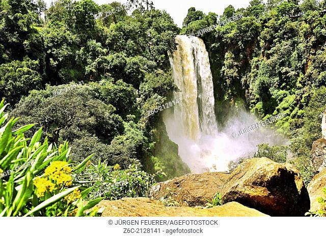 Thomson's Falls in Kenya, Nyahururu