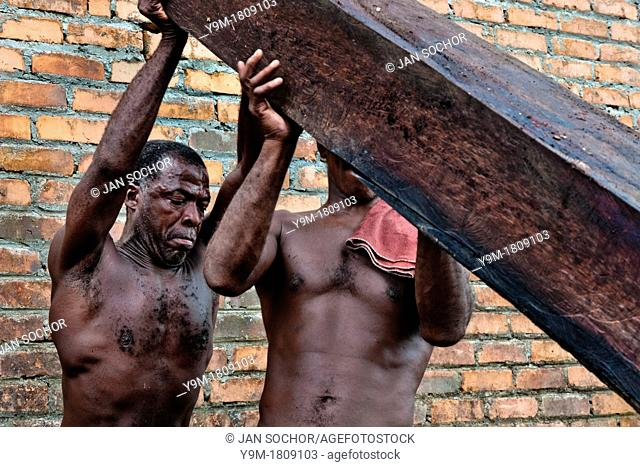 Colombian workers lift a heavy timber from the Pacific rainforest at a sawmill in Tumaco, Colombia, 18 June 2010  Tens of sawmills located on the banks of the...