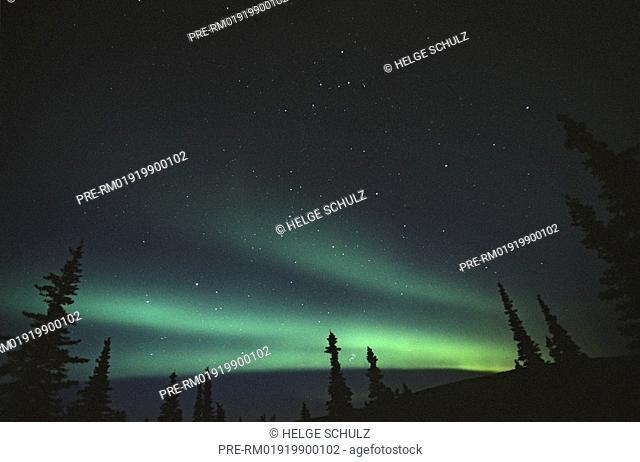 Northern lights - Polar lights
