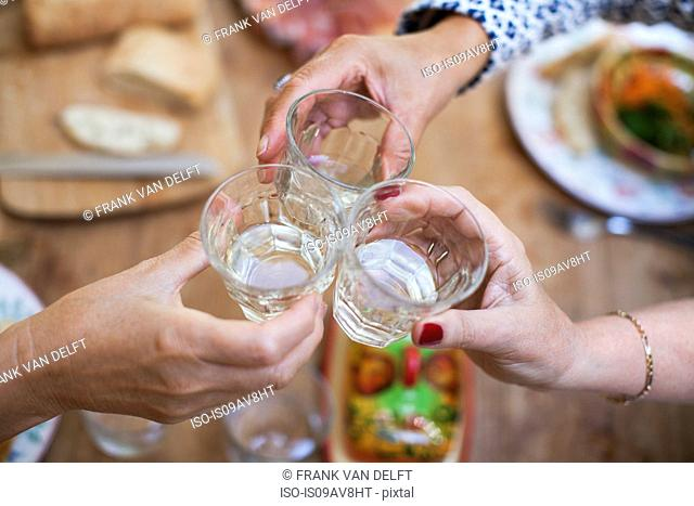 Three women having lunch together at home, making a toast, close-up of glasses