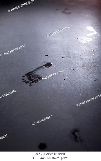 Wet footprint on floor