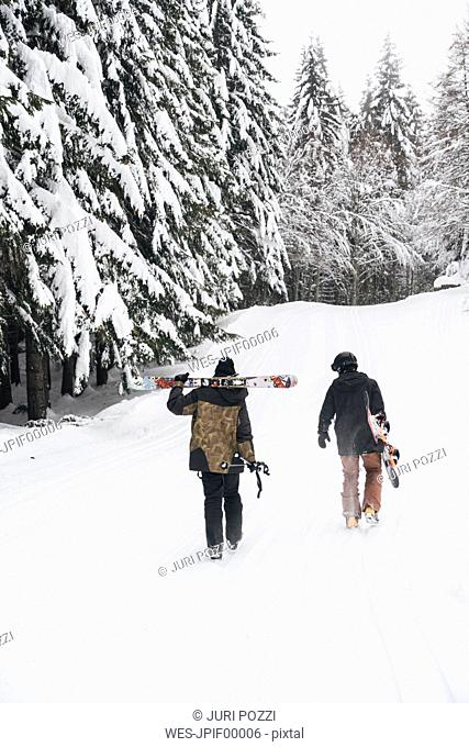Italy, Modena, Cimone, rear view of couple with skiers and snowboard walking in winter forest