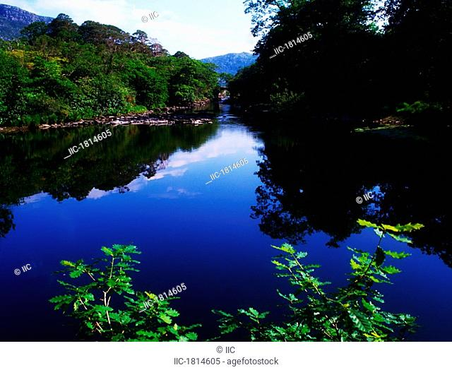 Meeting of the Waters, Lough Leane, Upper Lough, Killarney National Park, Co Kerry, Ireland