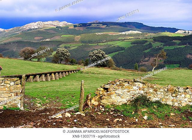 Guriezo Valley, Cantabria, Spain
