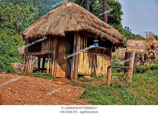 UGANDA, BUHOMA, 18.02.2015, Bwindi Impenetrable National Park, Uganda, Africa - Buhoma, Uganda, 18/02/2015