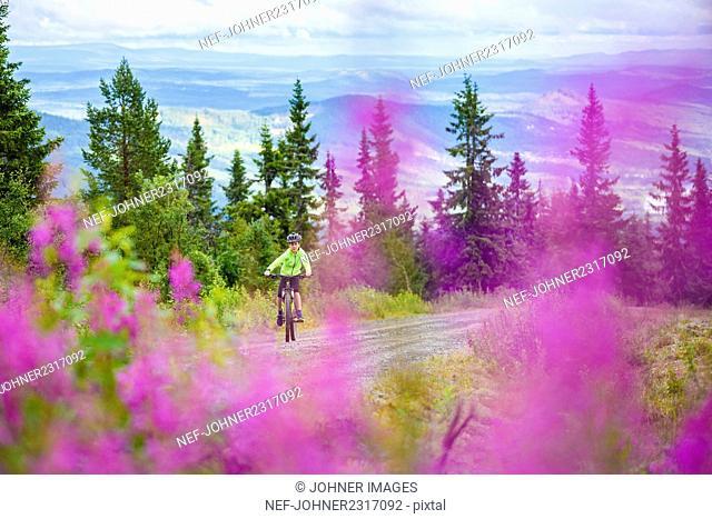 Boy cycling in mountain scenery