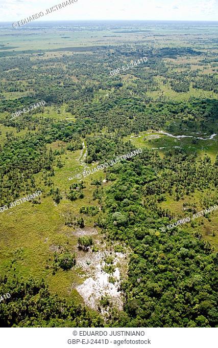 Fly over on the Pantanal Sulmatogrossense, Mato Grosso do Sul, Brazil