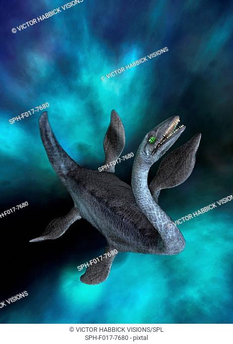 Plesiosaur, illustration