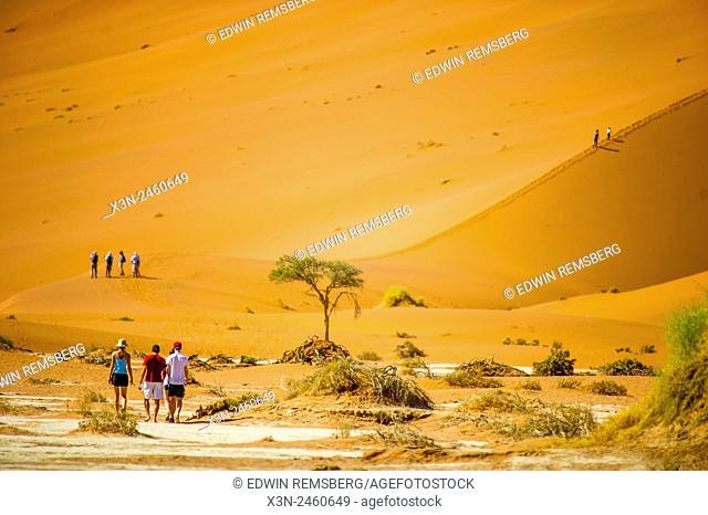 Sossusvlei, Namibia, Africa - People walking through the desert