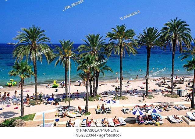 High angle view of tourists on beach, Playa den Bossa, Ibiza, Balearic Islands, Spain