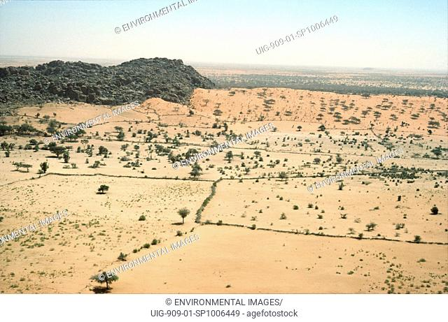 LANDSCAPE - SUDAN, Kordofan Province. Shrubs cover much of the Sahel. In many places, overgrazing has destroyed shrubs and grass and the soil blows away