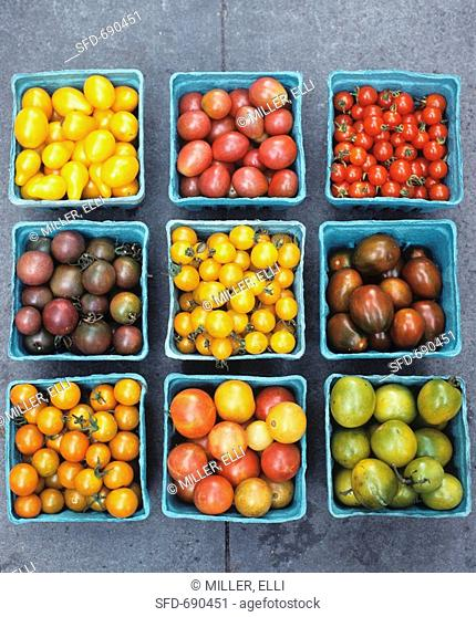Variety of Tomatoes in Pint Containers