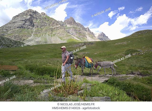 France, Hautes Alpes, Vallee de la Claree, path of the refuge of the Chardonnet