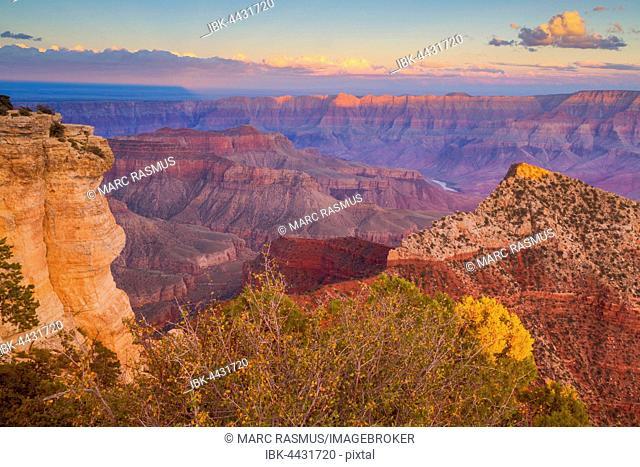 View of Grand Canyon, evening light, North Rim, Grand Canyon National Park, Arizona, USA