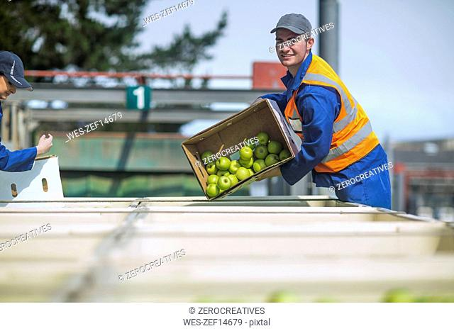 Worker in reflective vest packing apples