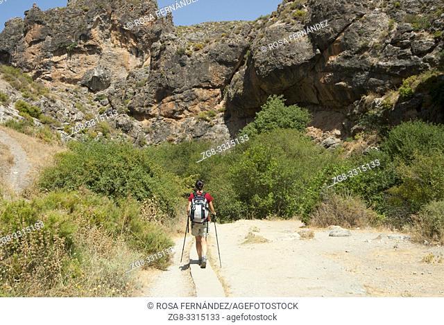 Woman tourist walking along a path near a riparian wood and Monachil River, Monachil, province of Granada, Andalucia, Spain