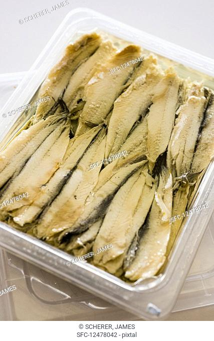 Anchovies in a plastic box