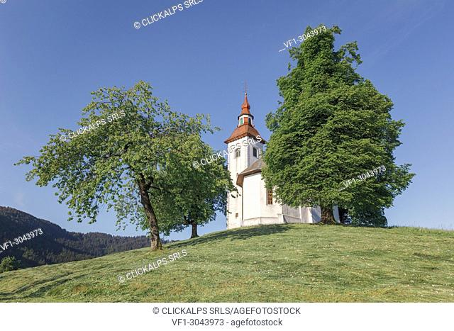 Europe, Slovenia, municipality of Skofja Loka, the church of St. Thomas (Sveti Tomaz) on a hilltop in the Slovenian countryside