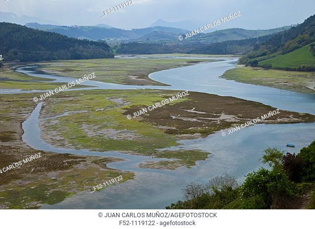 Pombo marsh, San Vicente de la Barquera, Cantabria, Spain