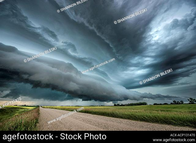 Storm with wave clouds over a canola field and gravel road in southern Saskatchewan Canada