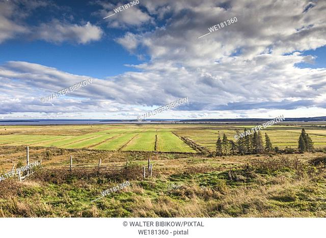 Canada, New Brunswick, Bay of Fundy, Hopewell Hill, elevated view of fields and Bay of Fundy, late afternoon
