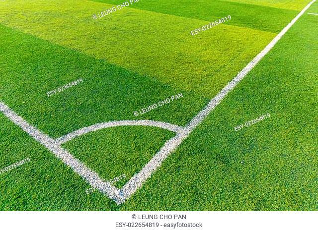 Football court grass