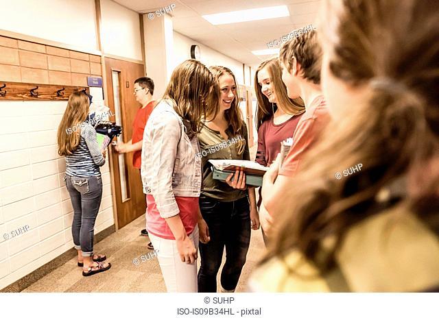 Teenagers looking at notebook in high school corridor
