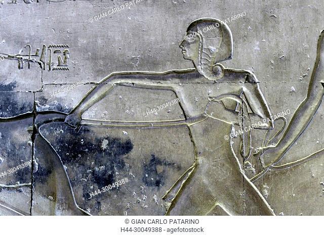 Abydos, Egypt, the mortuary temple of pharaoh Seti I, Menmaatra, (XIX° dyn. 1321-1186 B.C.) - a scene on a wall