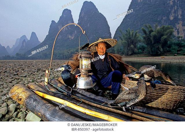 Typical fisherman with cormorants, Xingping, Guangxi, China, Asia