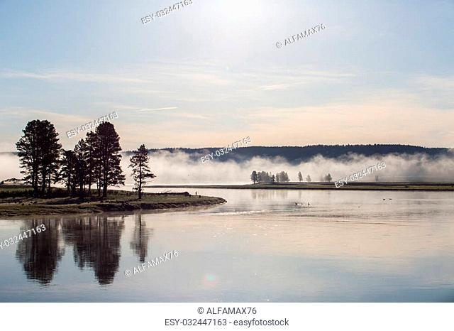 Yellowstone National Park is a national park located primarily in the U.S. state of Wyoming. In this park live American Bisons