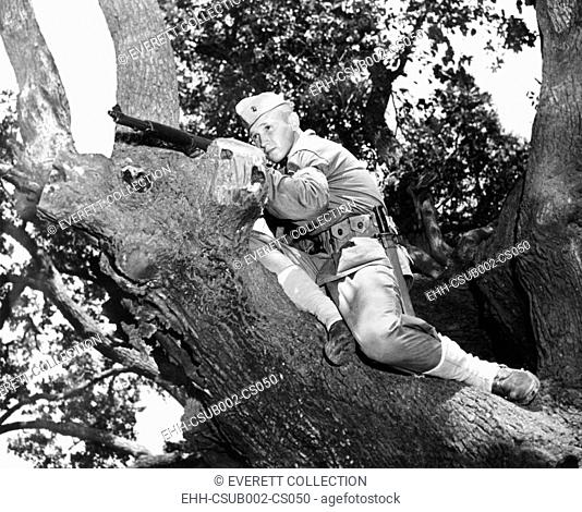 Stephen P. Hopkins, son of Harry Hopkins, in basic training at Parris Island. He is in a tree with his M-1 rifle. Aug. 1943