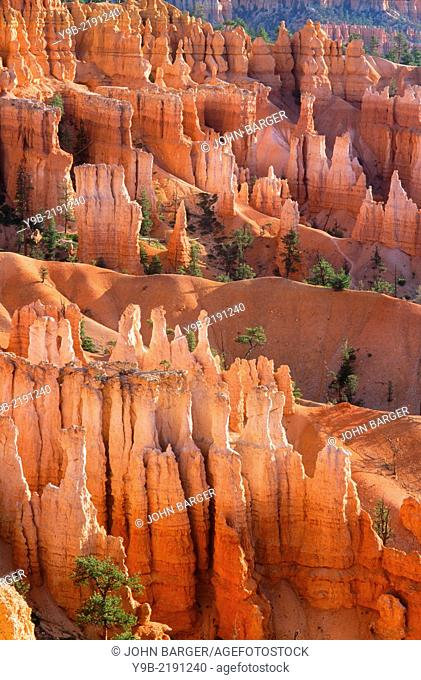 Colorful hoodoos and ridges beneath Sunset Point, Bryce Canyon National Park, Utah, USA
