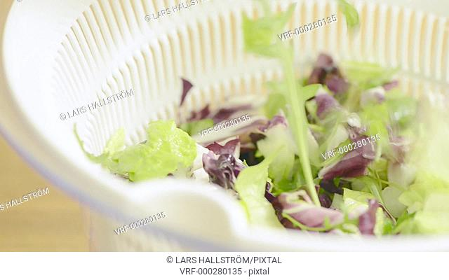 Mixed lettuce in colander with slow panning sliding motion. Film clip showing cooking and food preparation