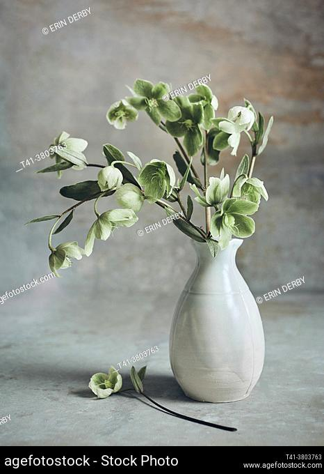 A handmade vase on a painted backdrop and filled with pale green fritillaria