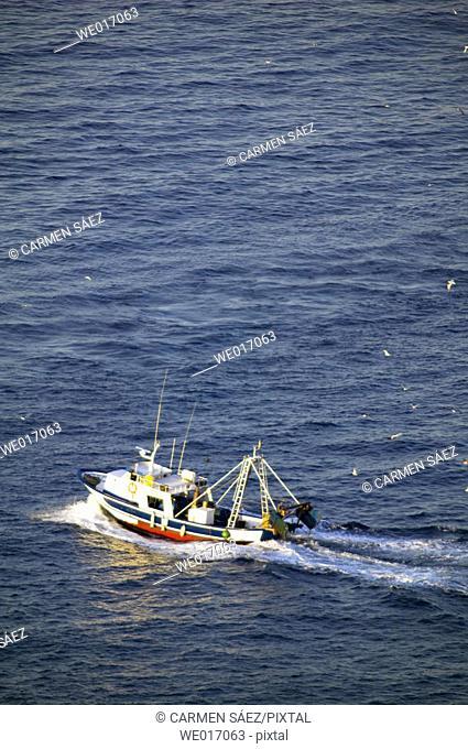 Fishing boat by Maro cliffs, Cerro Gordo area. Axarquía, Costa del Sol. Málaga province, Andalusia. Spain