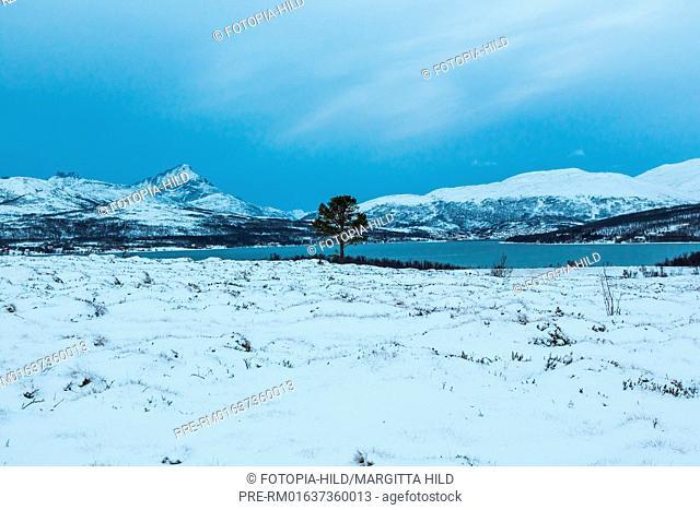Looking to Sørbotn, Troms Fylke, Norway / Blick auf den Sørbotn, Troms Fylke, Norwegen