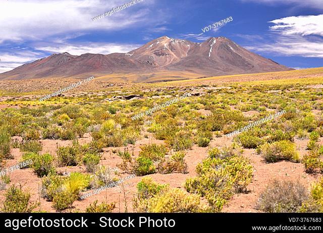 Miñiques volcano. San Pedro de Atacama, Antofagasta, Chile