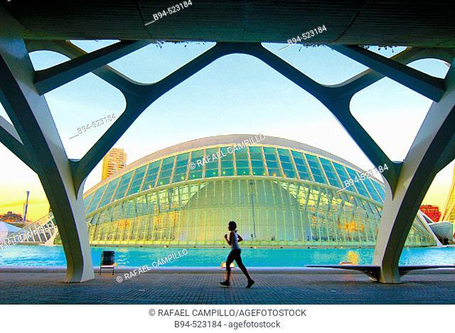 City of Arts and Sciences by S. Calatrava. Valencia, Spain
