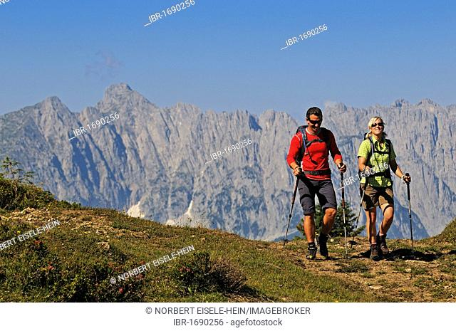 Hikers on the Eggenalm mountain pasture near the Straubinger Haus alpine lodge, in the back Mt. Wilder Kaiser, Reit im Winkl, Chiemgau, Upper Bavaria, Bavaria