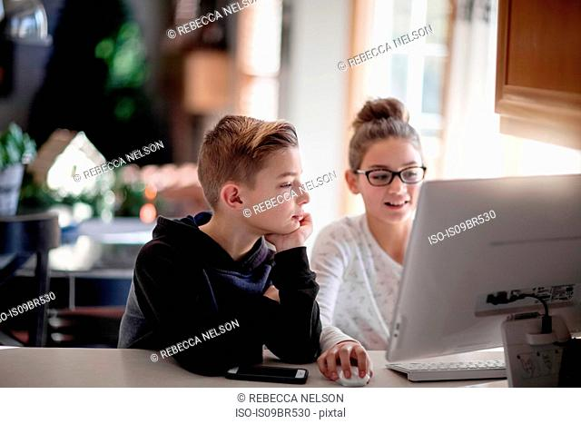 Siblings using computer at home