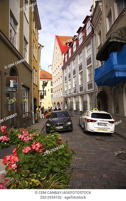 Street scene from the old town, Tallinn, Estonia, Baltic States, Europe